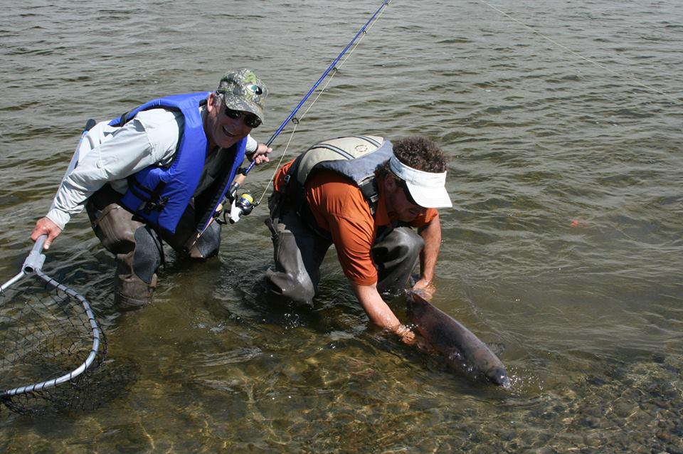 King Salmon, Gulkana River, fishing, Alaska, Copper Valley