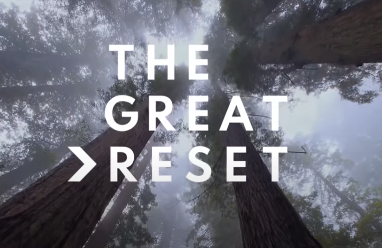 The Great Reset: How We Got Here