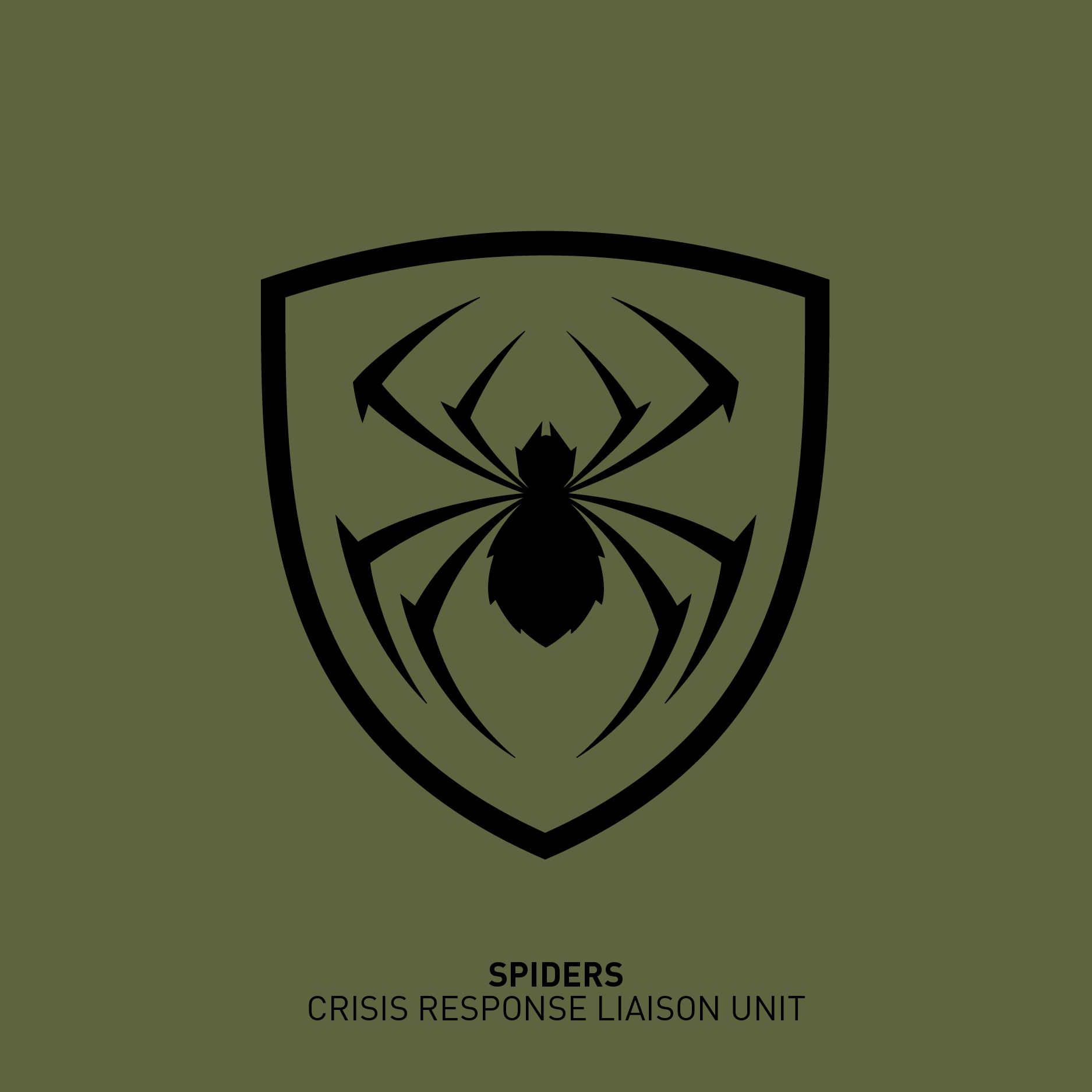 06spiders-01