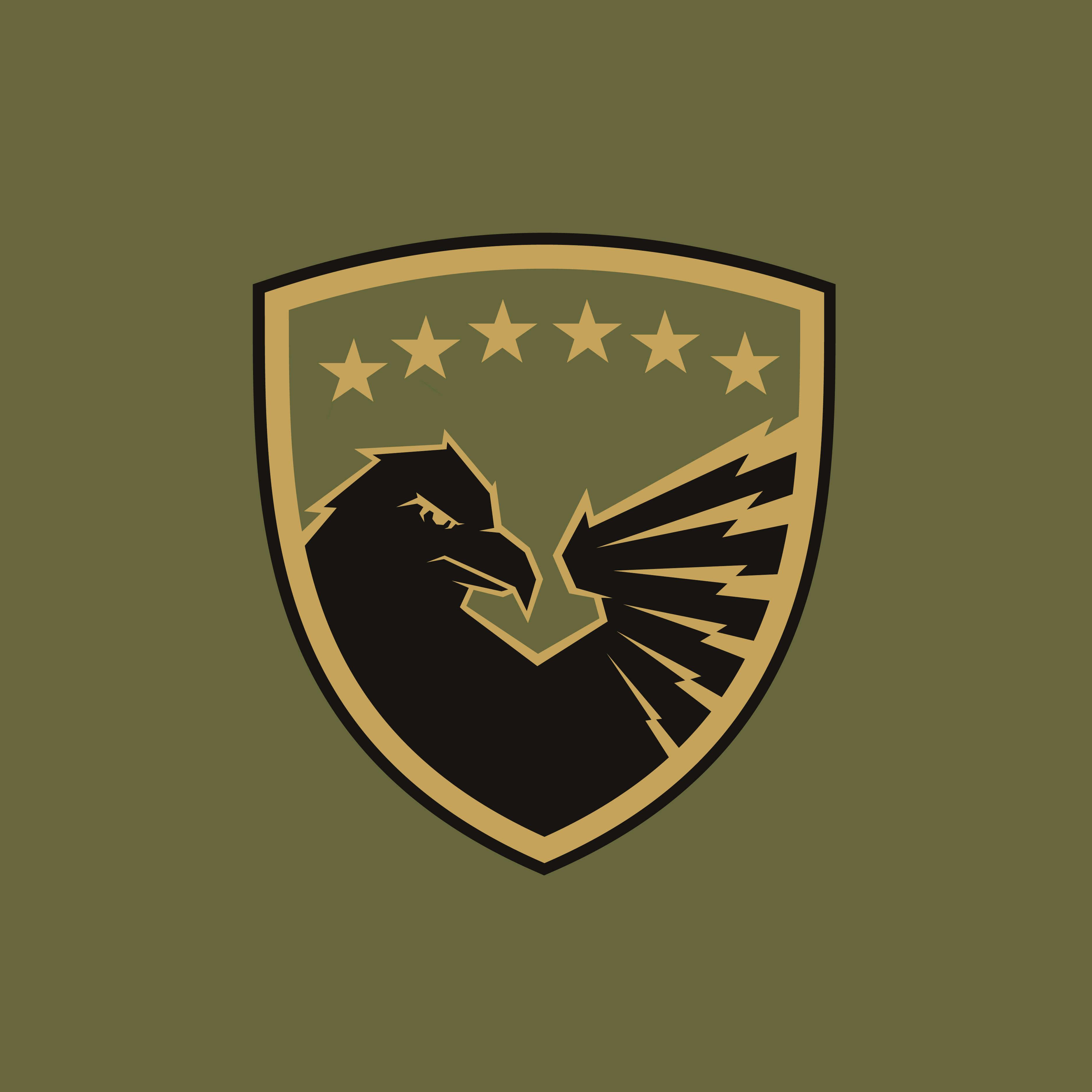 Kosovo Army Insignia