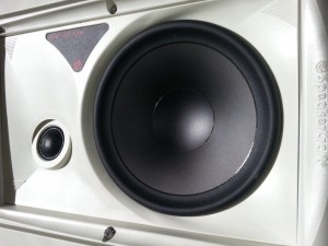 AIM speaker showing amiable tweeter and baffle.