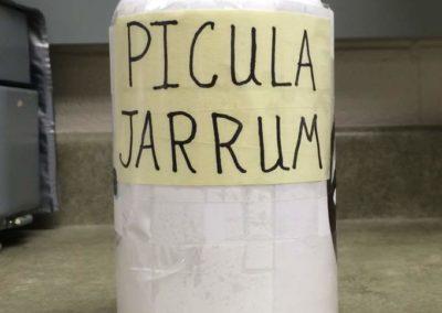IVH-Pharmacy-Pickle-Jar-1