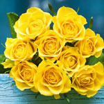 yellow-rose-meaning-the-gift-guru