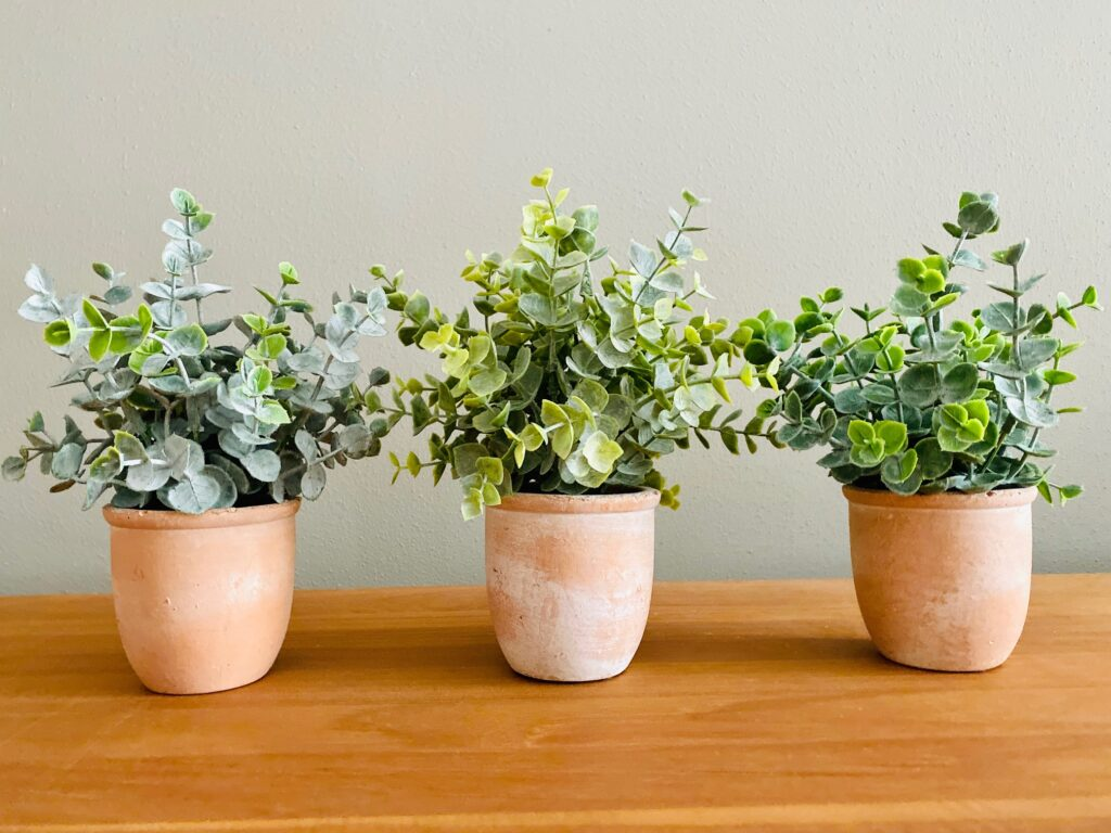 Set of 3 Rustic Artificial Eucalyptus
