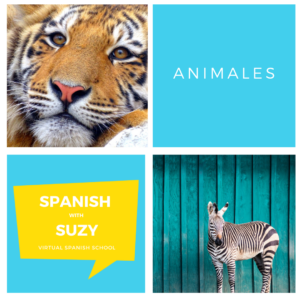 Spanish with Suzy Instagram template (1)