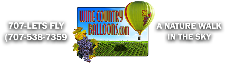 Wine Country Balloons Logo