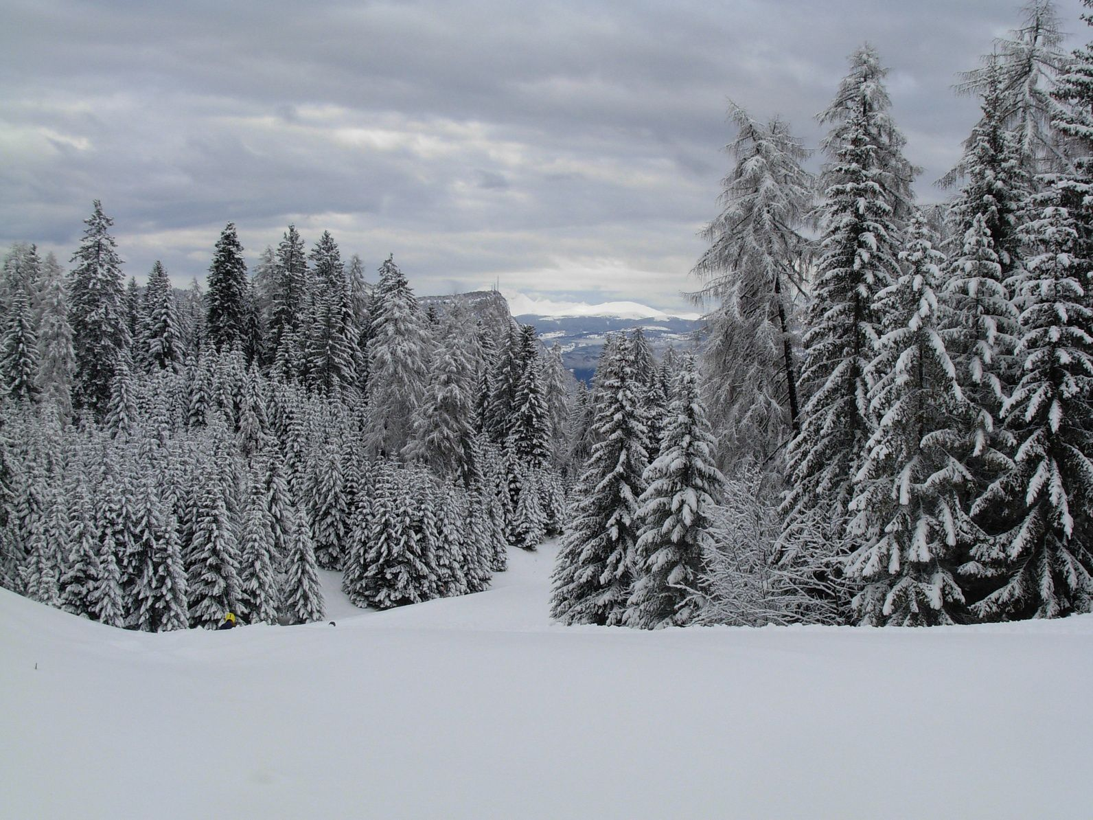 Winter 2018-2019 Township Bulletin