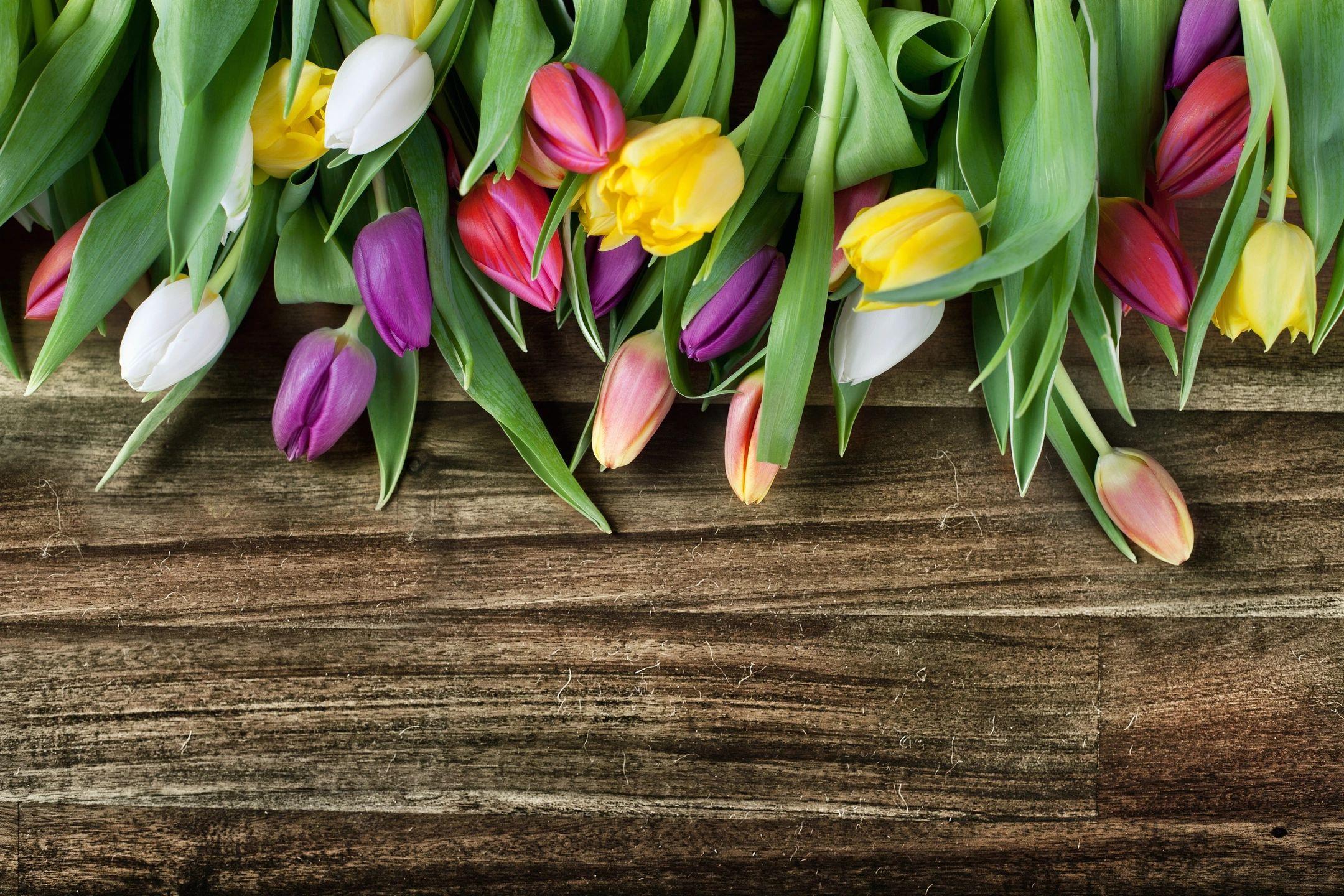 Spring 2019 Township Bulletin