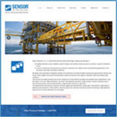 newsletter-website