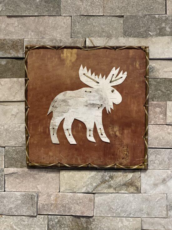 moose photo