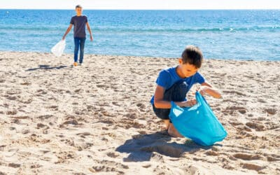 How to Participate in Local Beach and Park Cleanups This July