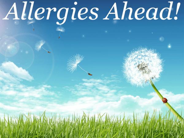Allergies Ahead-resized-600