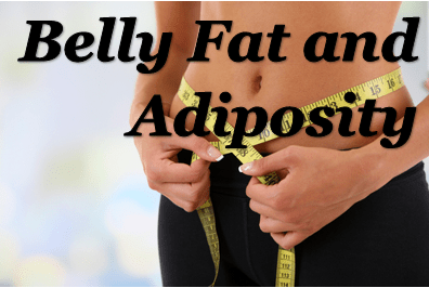 Belly Fat and Adiposity