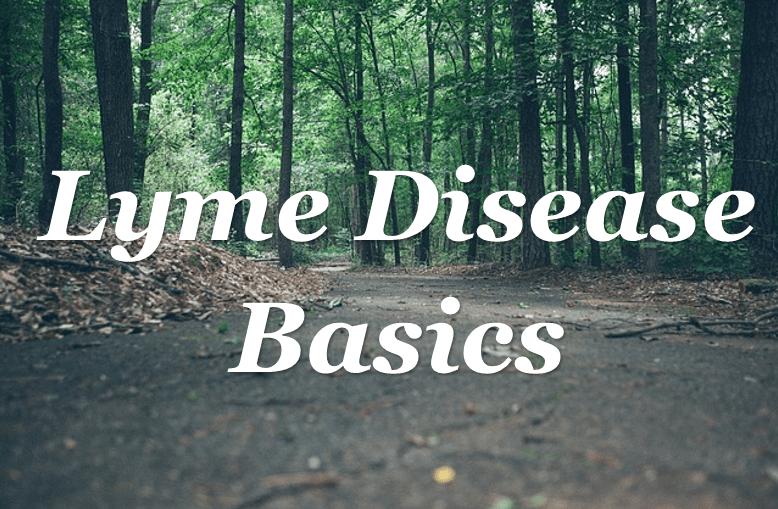Lyme Disease Basics