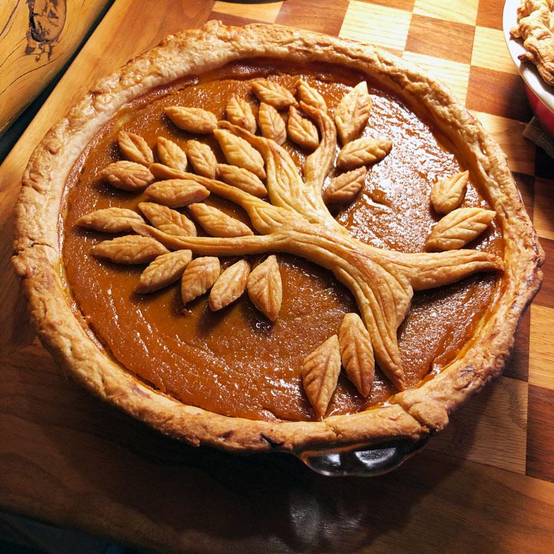 Photo of Pumpkin Pie with Tree of Life motif