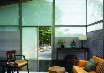 hunter-douglas-duette-min