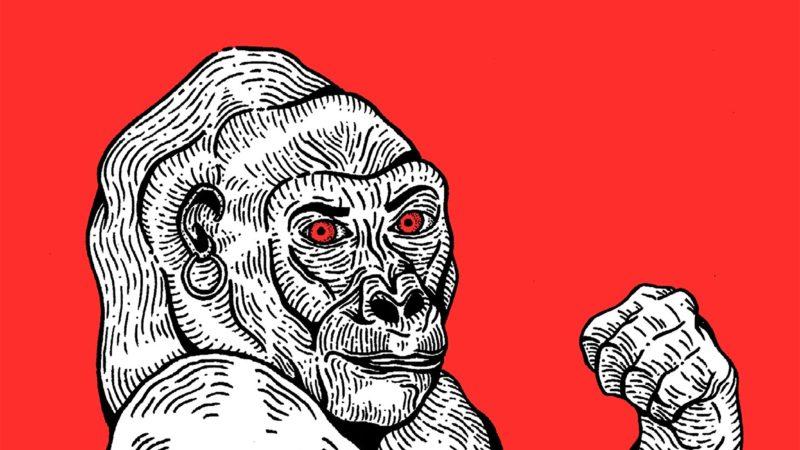 Teoría King Kong (tapa)