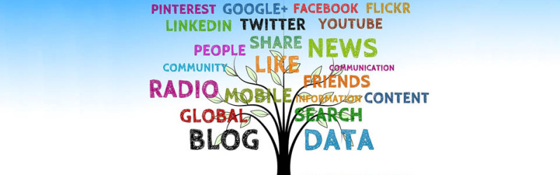 3 Social Media Habits You Should Always Avoid