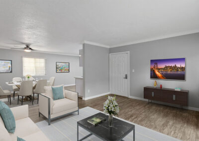 Furnished Solara Apartment Living Room
