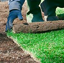 portland lawn renovation