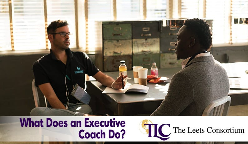 What does an executive coach do?