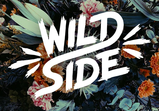 Wildside Preview