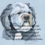 pastel portrait of tibetan terrier - commission