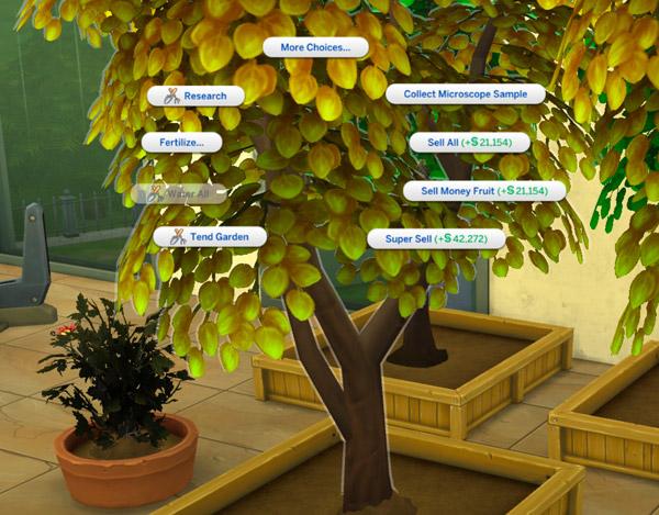 Money Tree - Sell Money Fruit
