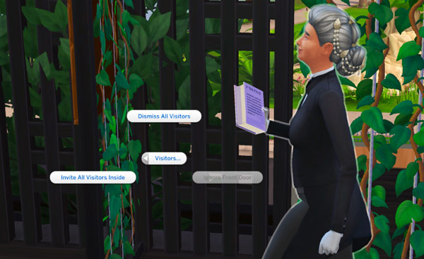 Sims 4-privacy issues-butler