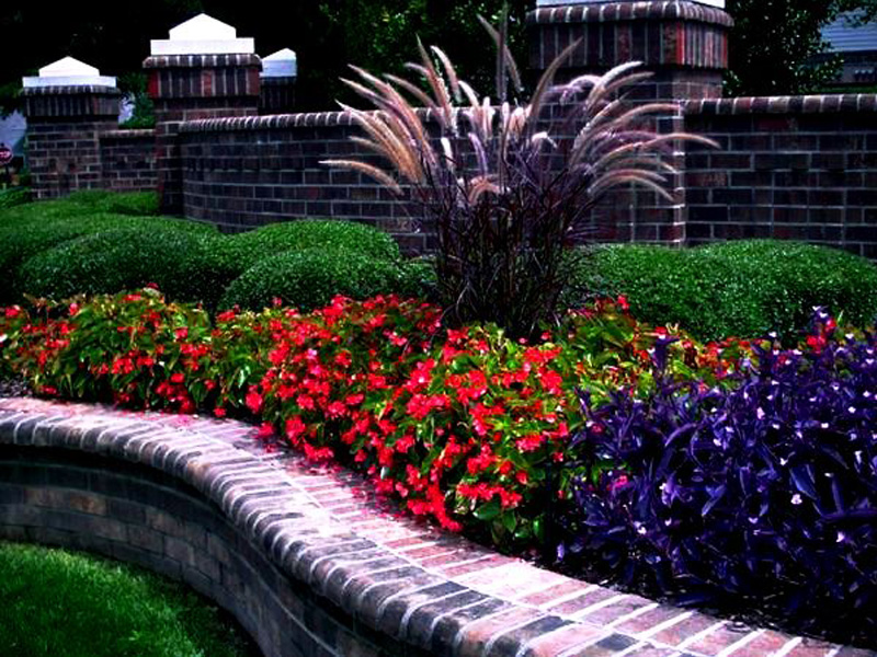 service-landscaping3