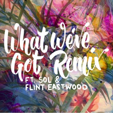 Manatee Commune - What We've Got Remix ft. Sol & Flint Eastwood