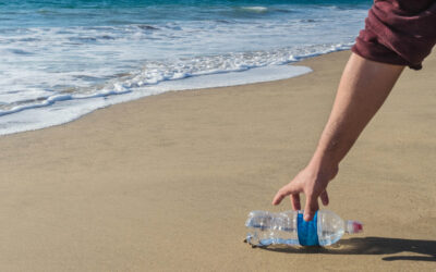 Clean Up the Beach for a Fun, Memorable Day!