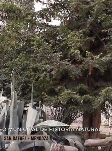 Mendoza tierra de museos - San Rafael
