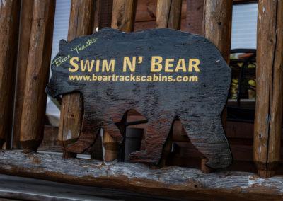 swim-n-bear-20