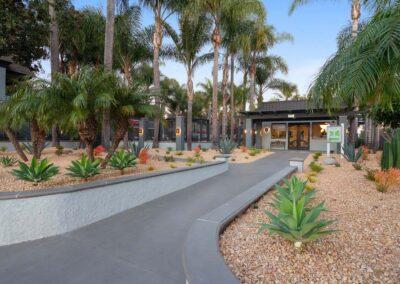 Garden pathways with desert landscaping