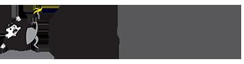 Big Fall Productions Inc Logo