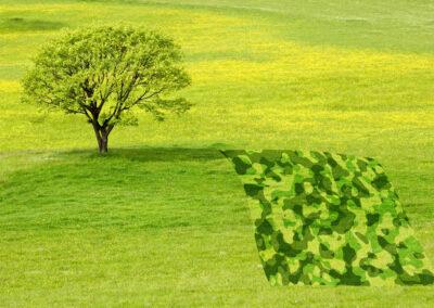 Ryan Turley 2020 Art & Ecology Initiative.