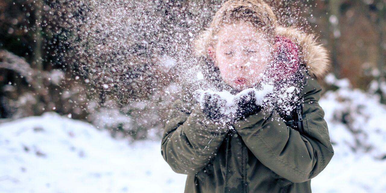 5 Wonderful Winter Experiences In Bemidji, Minnesota!