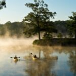 4 Ways To Spend A Weekend In Mississippi River State Park!