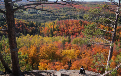The Best Outdoor Experiences Near The Brainerd Lakes Area!