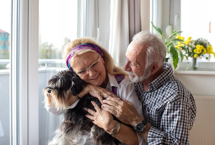 dog with older couple