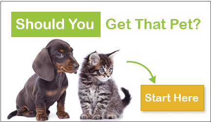 should-you-get-that-pet-cta