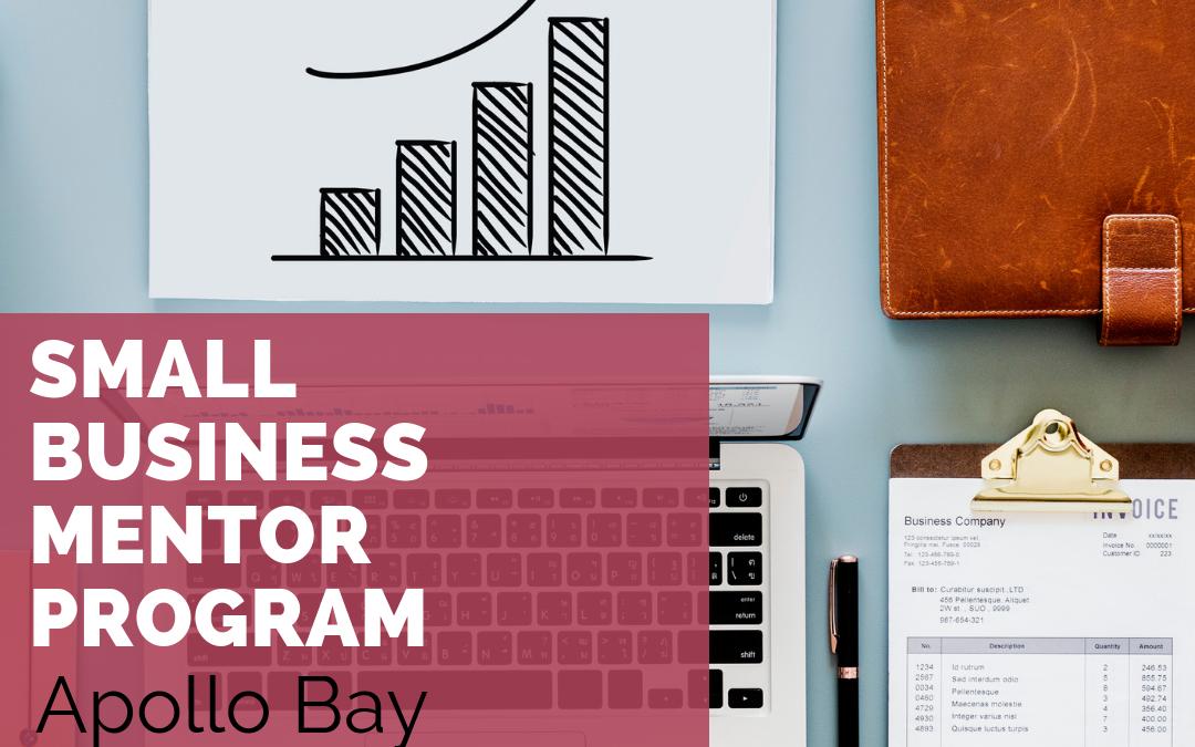 Small Business Mentor Program