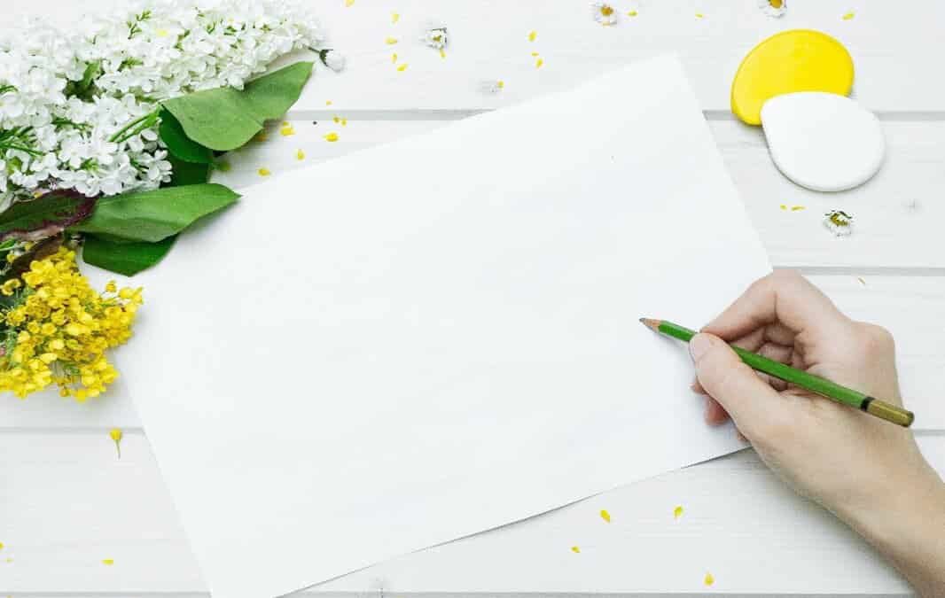 Flowers and a blank paper