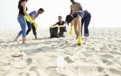 Why We Should Clean Our Beaches and Parks and How You Can Help This Summer
