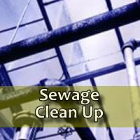 sewage-cleanup
