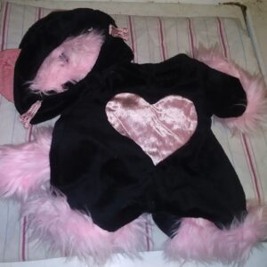 Build A bear Costume