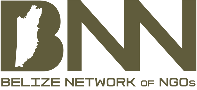 Belize non-profit organization