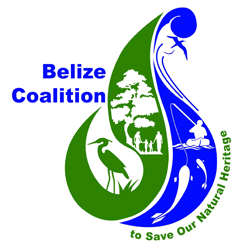 belize coalition