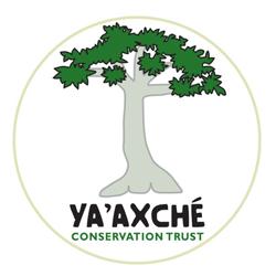 ya'axche logo